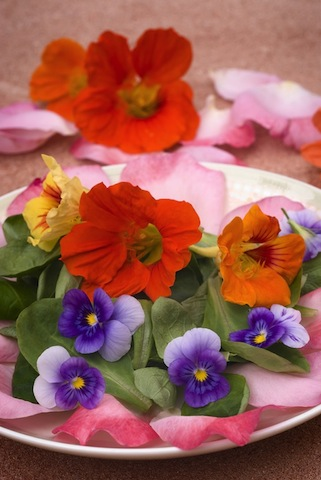 Antioxidant flowers antioxidant flowers not only a pretty sight but pretty nutritional too mightylinksfo