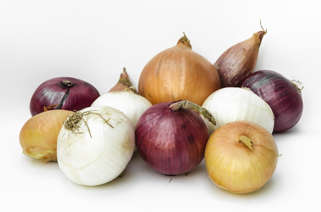 Onions And Shallots Alluim Family And Antioxidants Too