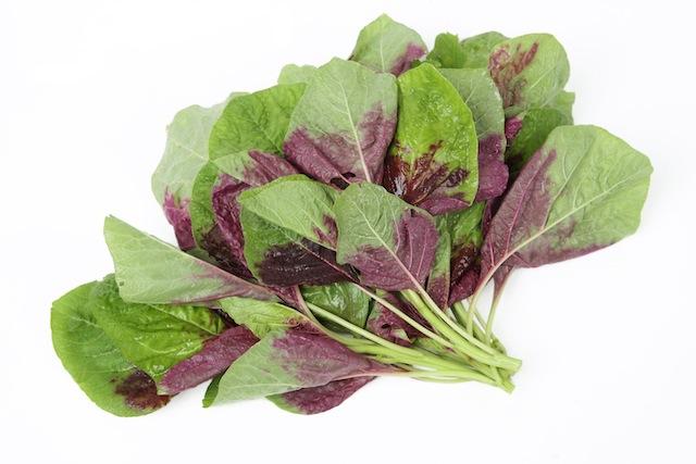 www.simplyantioxidant.com